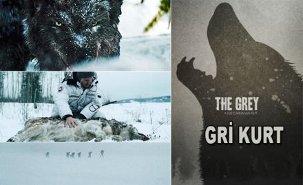 Gri Kurt - The Grey (2011) BRRip