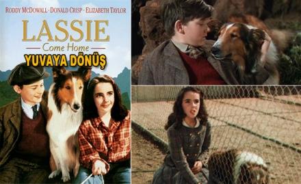 Yuvaya Dönüş - Lassie Come Home (1943)
