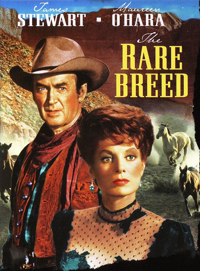 The Rare Breed (1966) filminin afişi