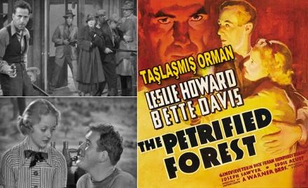 Taşlaşmış Orman - The Petrified Forest (1936) DVD9